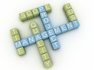 3d image project management  issues concept word cloud backgroun