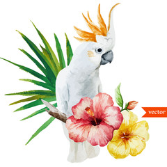 white parrot, hibiscus, tropical, palm trees, flowers, pattern