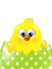 easter chick hatching from colorful egg isolated over white