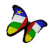 Central African Republic flag butterfly flying, isolated on whit