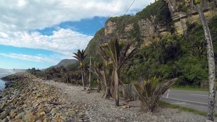 West-Coast - Punakaiki - South New Zealand