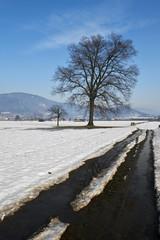 neve in campagna