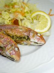 tipico piatto siciliano con  triglie  ripiene con mollica