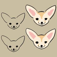 Set of cute little fennec foxes