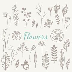 Hand drawn vintage flowers set