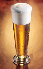 Tall glass of refreshing chilled beer