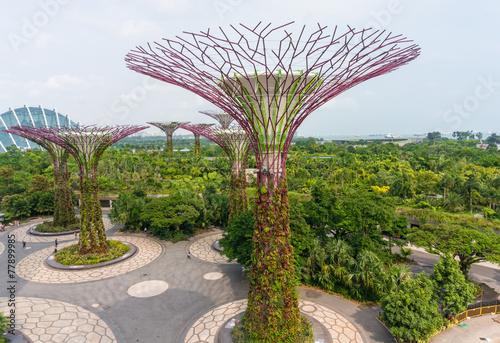 Fotobehang Singapore Super trees, Singapore
