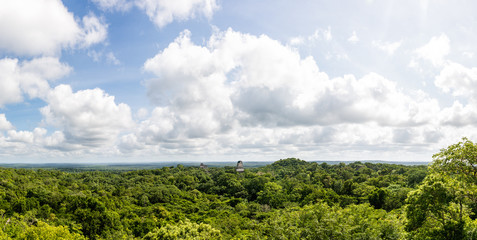 Panoramic View rainforest and Mayan Ruins . Tikal, Guatemala.
