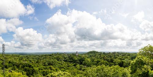 Panoramiczny widok lasy deszczowe i ruiny Majów. Tikal, Gwatemala.