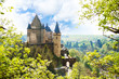 View of Vianden castle in Luxembourg from the hill - 77904123