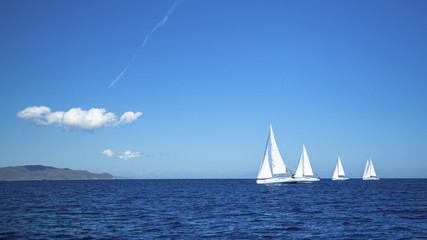 Sailing regatta. Yachting. Luxury yachts.