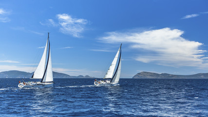 Sailboats in sailing regatta. Sailing.