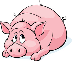 pig cartoon laying isolated on white background - vector