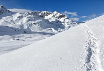 Path of the Rhaetian Alps, the Piz Bernina, Switzerland.