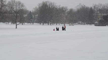 Dogs and people playing in the snow