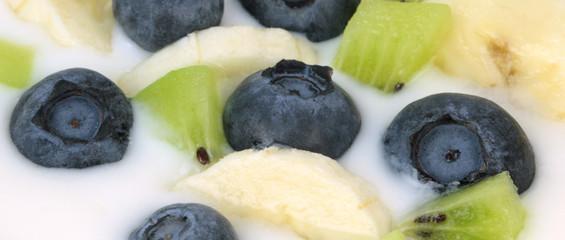Yogurt with blueberries, kiwi and banana slices. Macro shot