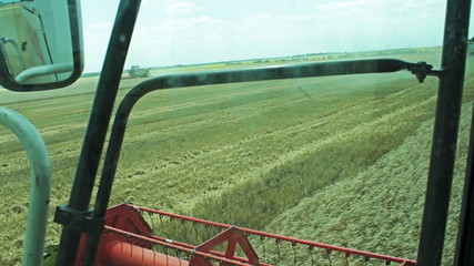 Combine Harvester gathers the wheat crop