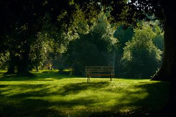 Panchina al parco