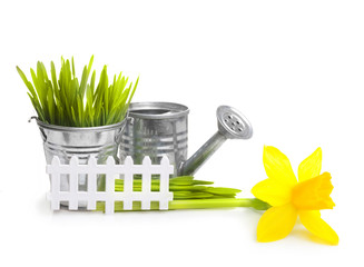 Gardening tools, grass and flowers