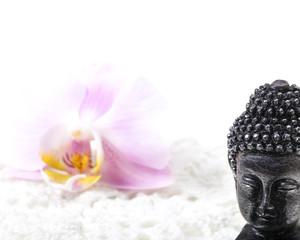 Buddha, Blüte