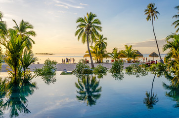 Palms reflecting on an infinity pool on the beach, French Polyne