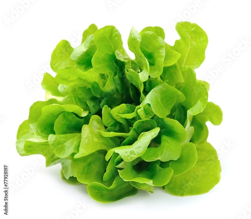 Aluminium Groenten Salad isolated on white background .Salad leafs