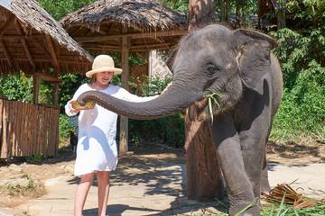 Teen girl feeding elephant calf