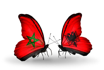 Two butterflies with flags Morocco and Albania