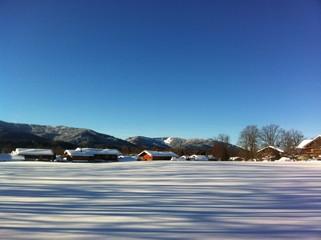 Sonniger Wintermorgen