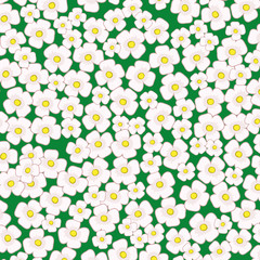 Vector background. Flowers.