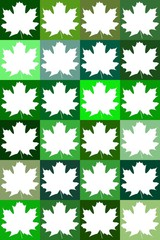 Green template of maple leaves