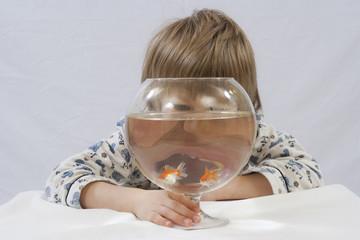 Kind hinter Glas mit Goldfischen