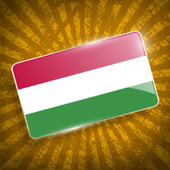 Flag of Hungary with old texture. Vector