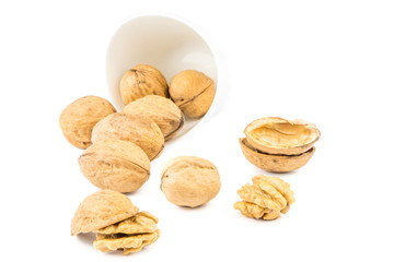 closeup view of wallnuts on white background