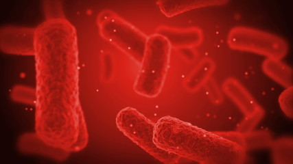 red Bacteries X-Ray.