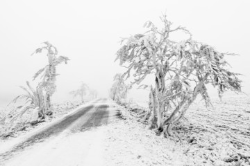 Winter snowbound road covered with snow and rime