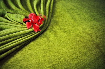 Hibiscus flowers wrapped in green blanket on the bed.