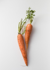 Two carrots