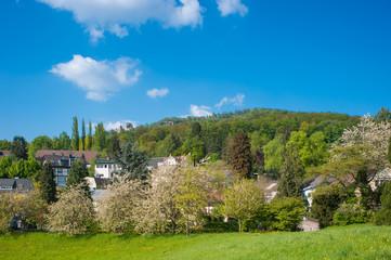 Landschaftsaufnahme mit Altem Schloss und Battertfelsen, Baden-B