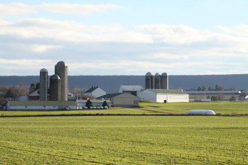 Silos & Buildings at Farm