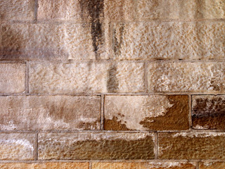 Feuchte Wand
