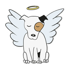 Angel Dog