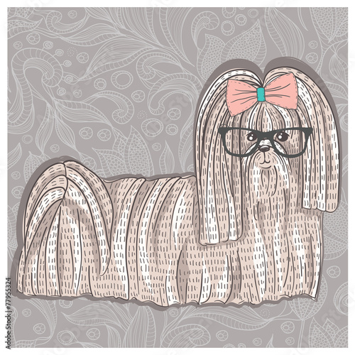 Hipster shih tzu with glasses and bowtie. Cute puppy illustratio - 77955324