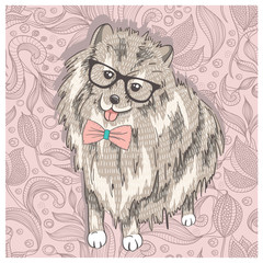 Hipster spitz with glasses and bowtie. Cute puppy illustration f