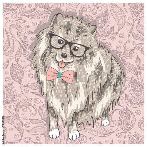 Fototapeta Hipster spitz with glasses and bowtie. Cute puppy illustration f