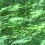 Seamless texture of water with cyanobacteria poster