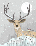 Cute reindeer and bird christmas night background. - 77956383