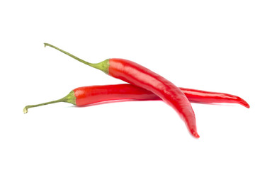 Two spicy red chili pepper