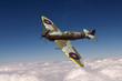 Supermarine Spitfire - 77959934