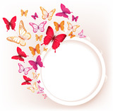 Fototapety Realistic Colorful Butterflies Isolated for Spring